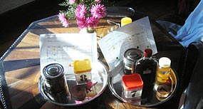 Ayurvedische Ärzte in Sri Lanka für Ayurveda Behandlungen und Ayurveda Therapien in Ayurveda Kurklinik in Sri Lanka. Panchakarma Kuren im Ayurveda Kurzentrum, Greystones Villa, Sri Lanka, sowie  Allergische Erkrankungen - Ayurveda-Kuren in Sri Lanka, 4